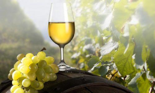 Приготовление белого вина