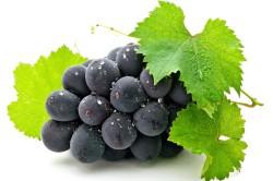 Виноград с тонкой кожицей