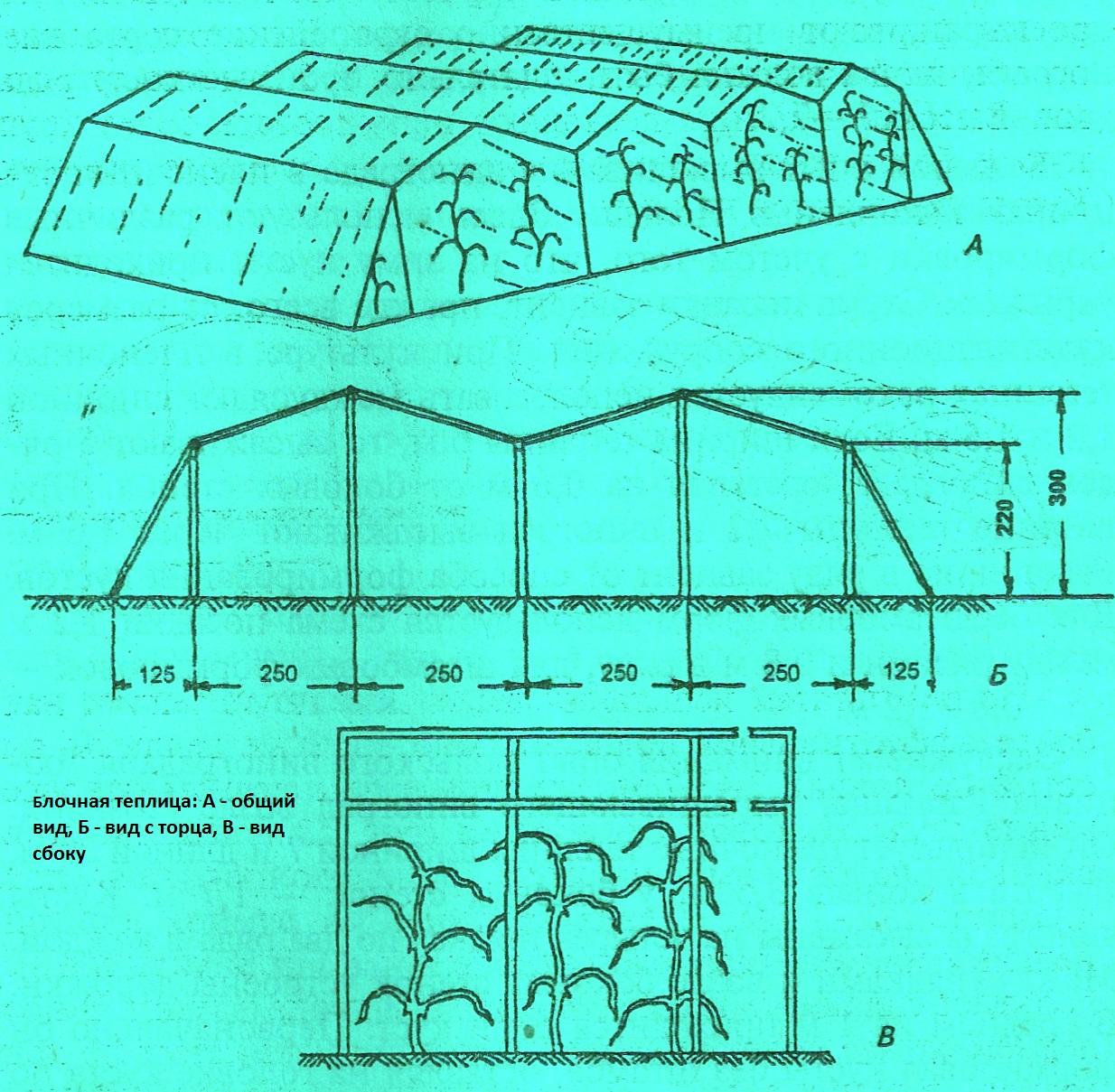 Схемы вышивок на крупной канве