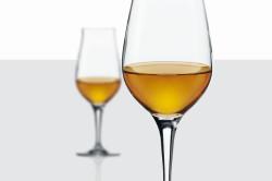 Правильный выбор бокала для дегустации вина
