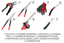 Инструменты для обрезки винограда