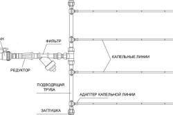 Схема подключения капельного полива