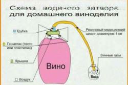 Схема водяного затвора для домашнего виноделия