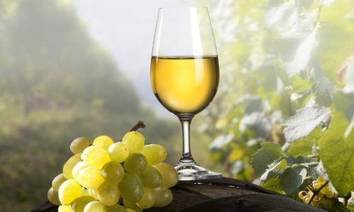 Приготовление белого сухого вина