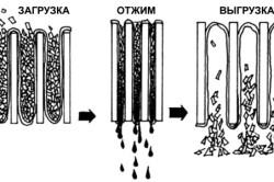 Процесс отжима и фильтрации сока