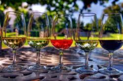 Порядок вин при дегустации