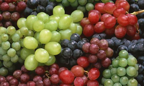 Польза винограда и виноградной косточки
