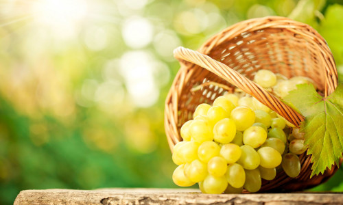 Виноделие из белого винограда