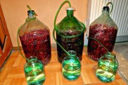 Настойка из винограда в домашних условиях простой 268