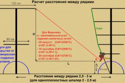 Расчет расстояния между шпалерами